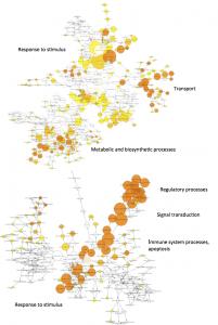 figure1_adaptiveevolution_paper